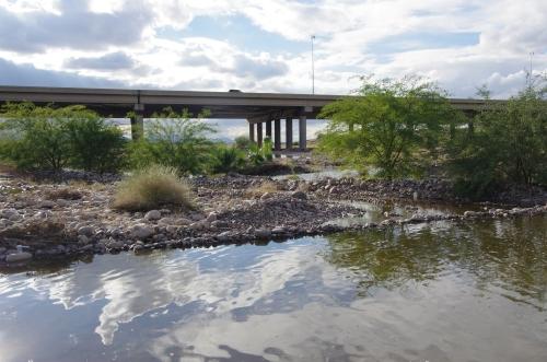 A true urban river, the Salt in late November
