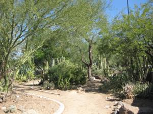 Xeriscape demonstration garden at Glendale Public Library