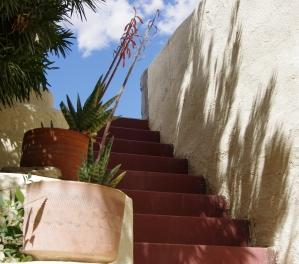 aloe stairway